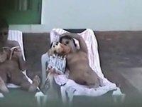 hedonism iii topless chick video on StupidCams