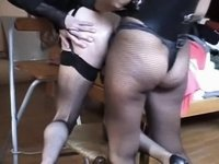 Thong-on is their favourite toy for sure video on StupidCams