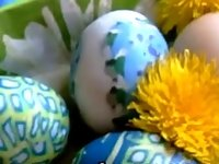 Happy easter with fresh eggs from weet pussy video on StupidCams